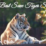 30+ Best Save Tiger Slogans