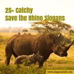 25+ Catchy Save the Rhino Slogans